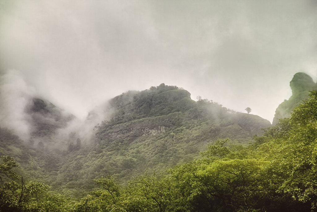 Magnificent view around Bhimashankar temple